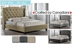 Carter Upholstered Bed Collection