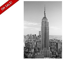"Empire State Building 42"" x 68"" Wall Art"