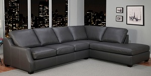 Expressions Leather Sectional Collection